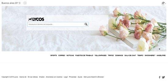 buscadores-de-internet-tipos- (11)